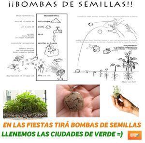 Bombas de Semillas